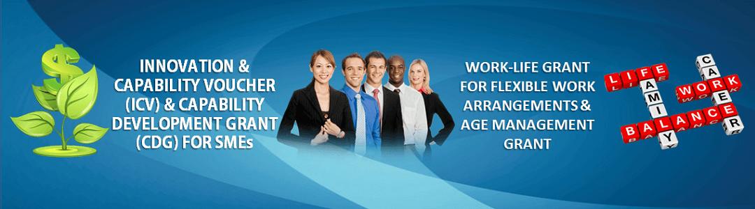 ICV, CDG, Work-Life & Age Management Grants